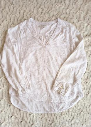 Блуза /h&m/6/36/