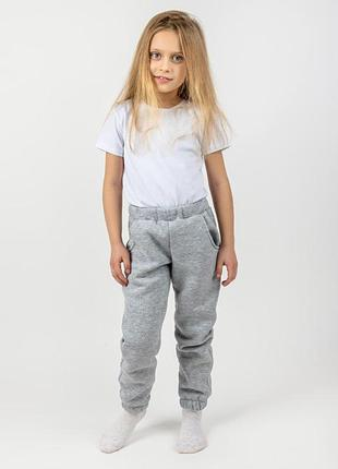 Детские теплые штаны, серый