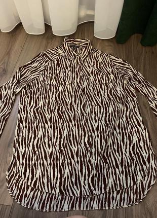 Рубашка принт зебра