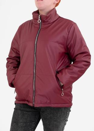 Стильная бордовая марсала осенняя демисезон куртка из эко-кожи большой размер батал оверсайз