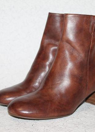 Базовые кожаные ботинки ecco 36 размер 23,5 см стелька