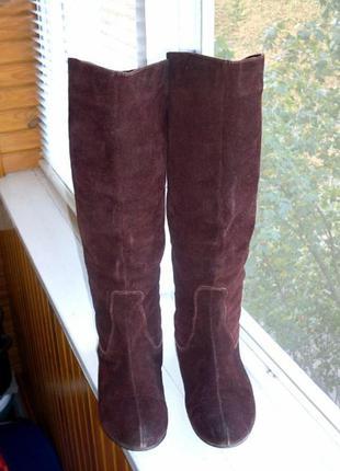 Женские сапоги замшевые демисезонные осенние ботфорты жіночі чоботи