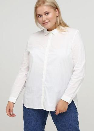 Женская рубашка esmara
