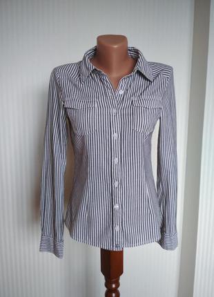 Рубашка в полоску, блузка, блуза