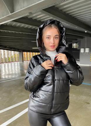 Тёплая женская куртка демисезонная холлофайбер