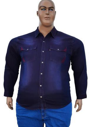 Большого размера джинсовая рубашка хамелеон