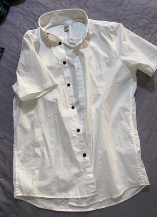 Чоловіча фірмова рубашка бюджетні ціни - s