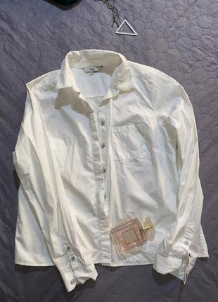 Рубашка блуза базовая фирменная качественная -s m