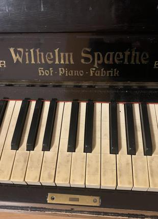 Фортепиано wilhelm spaethe gera berlin