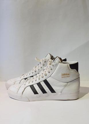 Кроссовки кросівки adidas basket profi    fw3108