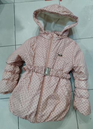 Куртка зимняя, демисезонная bembi, бемби