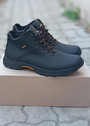 Мужские зимние ботинки ecco biom winter кожаные, черные