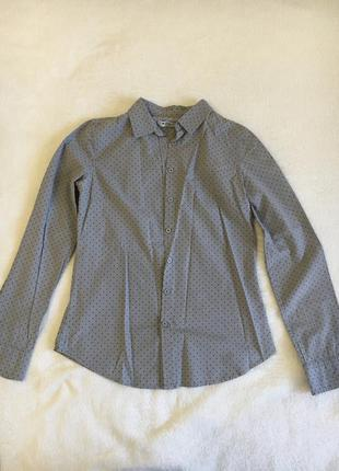 Рубашка в мелких горох , колинс , классическая рубашка с воротником