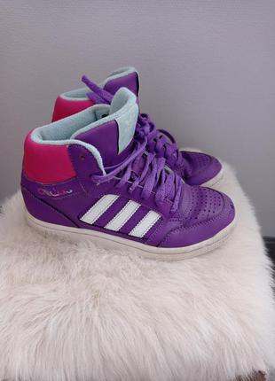 Фиолетовые спортивные ботинки кроссовки adidas