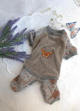 🐾🍁комбинезон 🦋🐕 велюр плюшевый костюмчик с бабочкой трикотажный для маленькой собачки