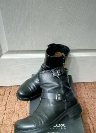 """Ботинки """"geox"""" кожа 24,5 см"""