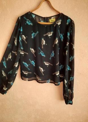 1+1=3 легкая блуза принт птиц