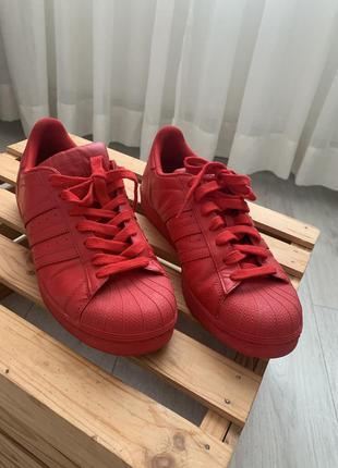 Кроссовки красные superstar