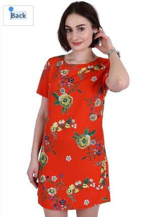 Нежное платье zack london