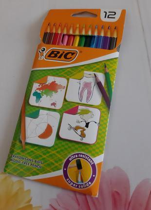 Цветные карандаши.bic