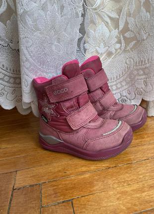 Детские зимние сапожки экко дитячі зимові черевики сапоги ботинки ecco