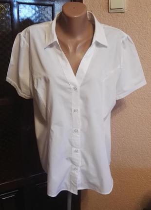 Белая рубашка тенниска женская нарядная,размер евро 18(46) 50-52размер от peacocks