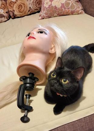 Кукла, маникен, голова