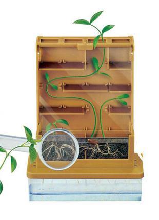 Детский научный набор  удивительные растение