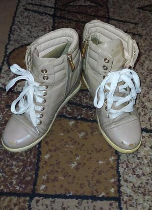 Бежевые ботинки t.taссardi