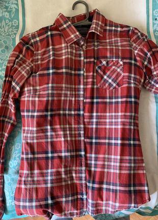 Рубашки колинс