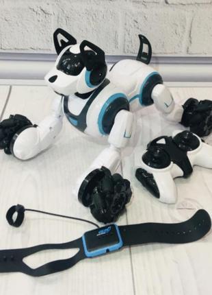 Интерактивная трюковая собака робот stunt dog 800 а