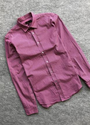 Класична оригінальна сорочка mulberry classic shirt pink/brown