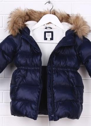 Gpk 0102 куртка gap kids