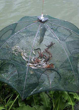 Раколовка многоугольная зонт/раколовка/рыбалка/ловить раков