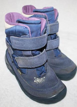 Ботинки термо фирмы ecco 29 размера по стельке 18 см. вся стелька с загибом 19 см.