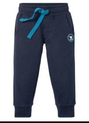 Спортивні штани lupilu з легким утепленням