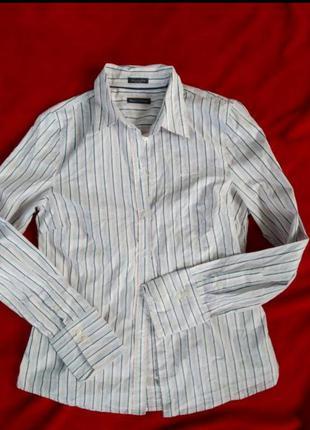 Базовая хлопковая рубашка в полоску