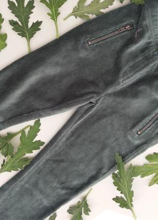 Вільветові штани-лосіни