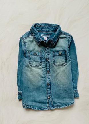 Matalan стильная  джинсовая рубашка на мальчика  18 мес