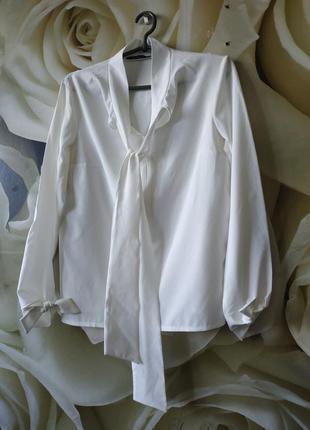 Красивая блуза базовая белаяблуза