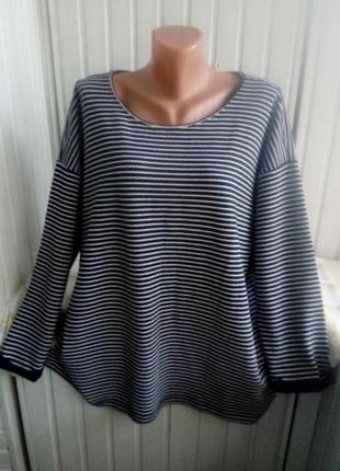 Трикотажная блуза свитшот лонгслив большого размера батал