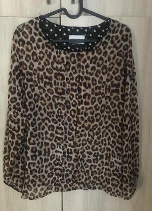 Блуза animagemella