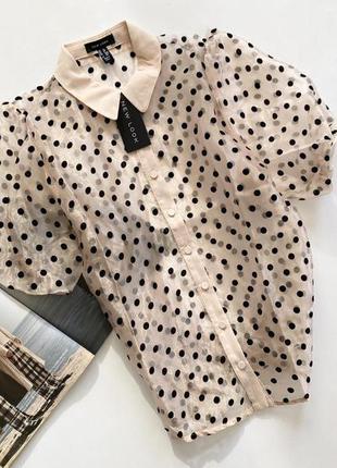 Шикарная блуза органза горох 12 л