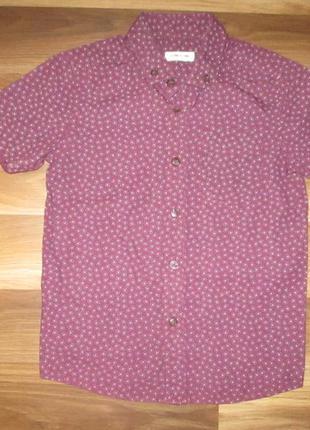 Нарядная бордовая котоновая рубашечка фирмы river island на 6 лет