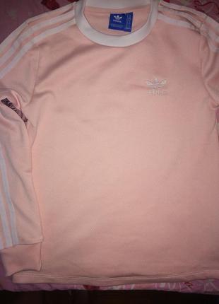 Модный нежно-розовый свитер