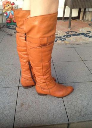 Сапоги ботфорты кожа зима как zara