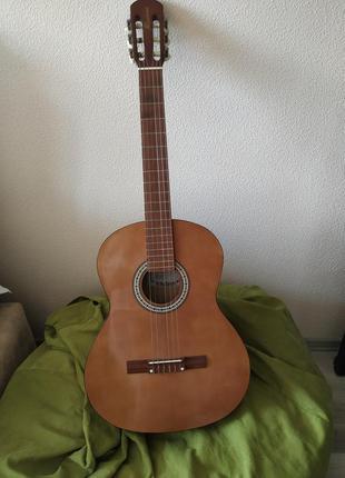 Гитара renome