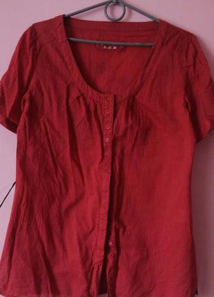 Рубашка tcm tchibo размер m- небольшой l