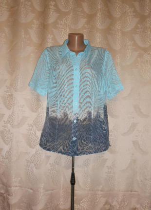 Блуза bonita