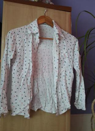 Блузка,блуза,сорочка